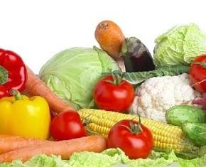Nutrition input