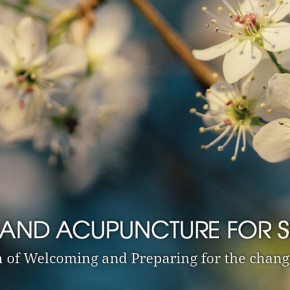 Yoga and Acupuncture workshop - this Saturday! 12-2